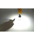 FEMEX Paltinum T10 10smd 3030 Chipset Mercekli Power Led Ampul